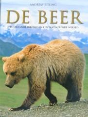 N - beer 2
